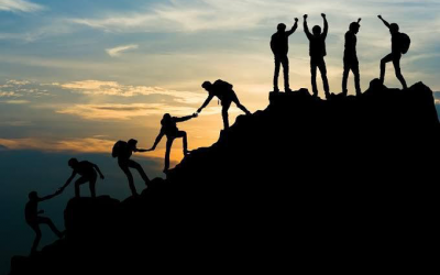 Why team building is important in an organisation?